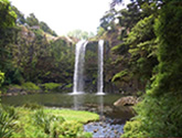 accommodation near whangarei falls